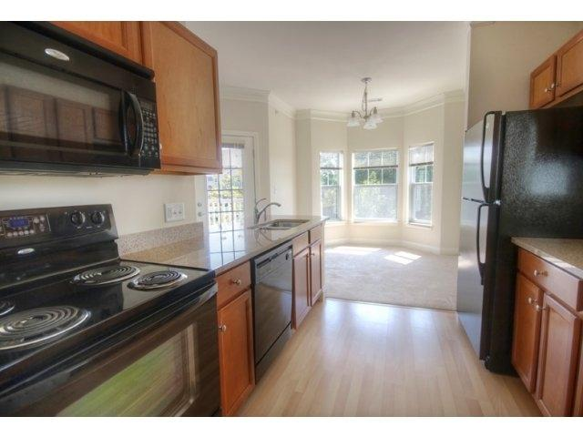 Luxurious 1 Bed, Granite Kitchen, W/D In Unit <<<<Pet Friendly