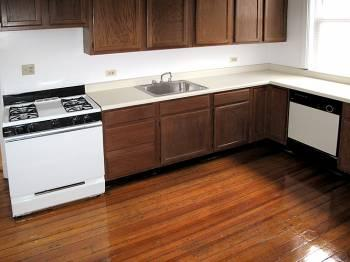 NICE BIG 1 BED UNIT IN LINCOLN PARK!!