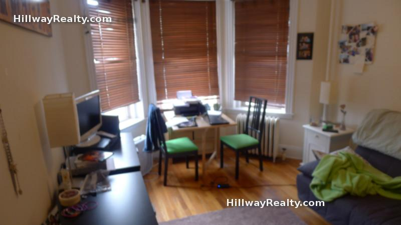 9.1: Centrally-located Studio, hrdwd flrs, W/D onsite,  pet-friendly