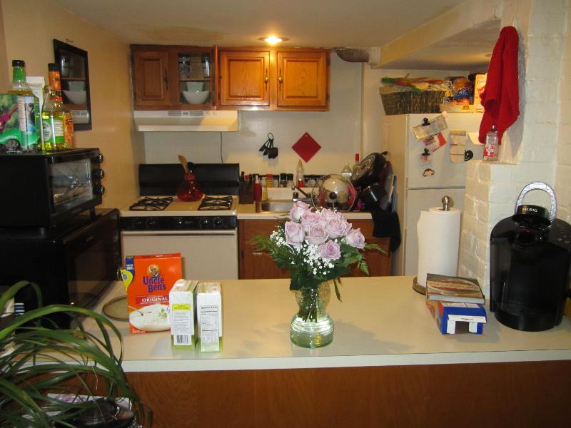Avail 9/1 - Spacious beautiful Allston 1bed