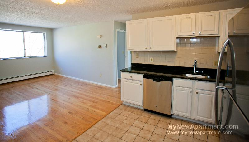 Awesome 1 BR *Newly Renovated Kitchen*Near Tufts Univ* Min Frm Ball*