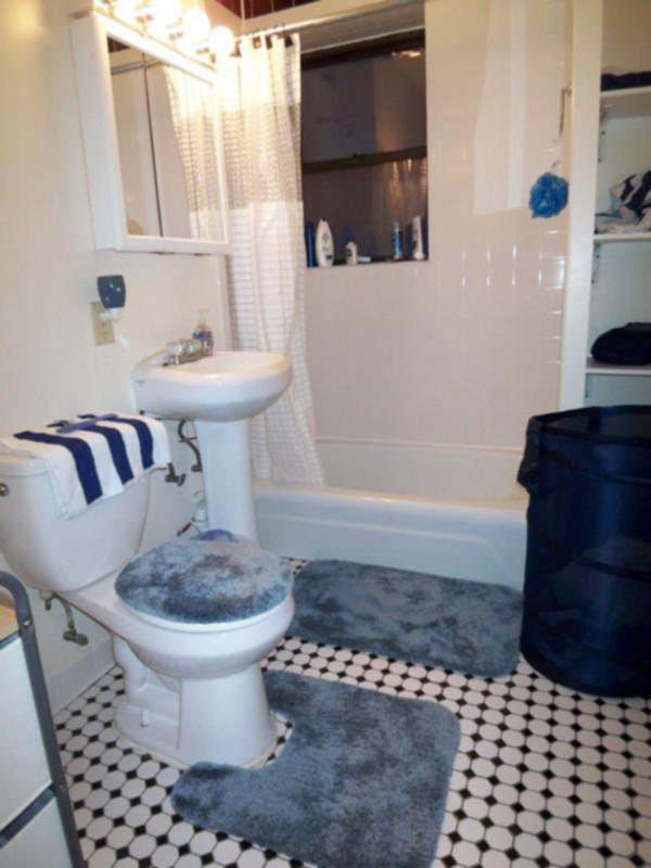 AVAIL NOW!!! LUXURIOUS, SPACIOUS, WELL LIT UPDATED 1 BR