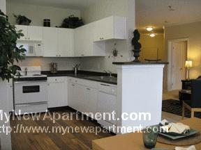 Gorgeous 1 Bedroom Apartment! Great Location!