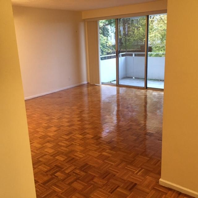 1 Bed, 1 Bath apartment in Brookline, Washington Square for $2,500
