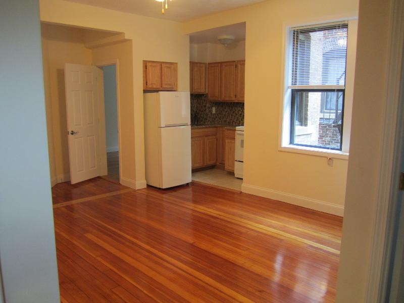 AVAIL 9/1 - Spacious, Renovated, Well lit 1 BR on WESTLAND AVE