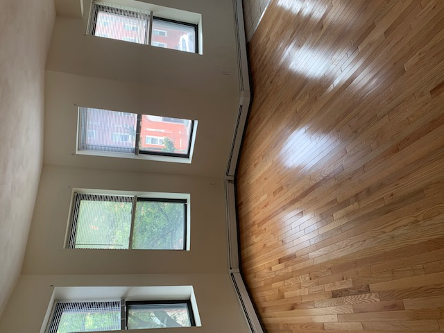 1 Bed, 1 Bath apartment in Boston, Jamaica Plain for $1,700