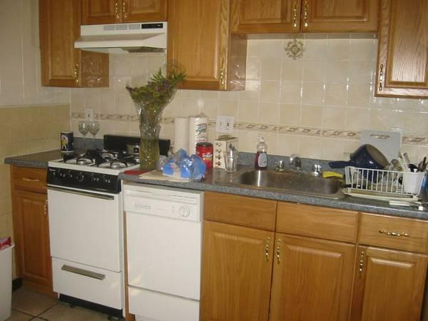 Cat Friendly Brighton 1bed in Great Location w/ utilities included!