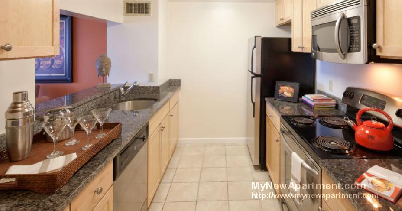 Luxury, Suburban Living w/ easy access to Boston! Newly renovated!