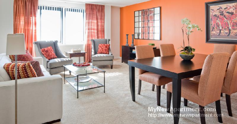 Great Studio Apt in Renovated Luxury Complex! Minutes from Boston!